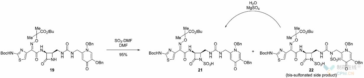 N-磺酸基团的引入