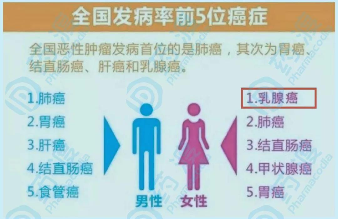 图二、中国癌症发病率