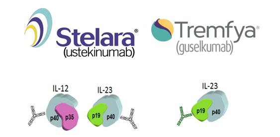 新生代IL-23单抗