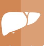 管窥国产肝细胞癌一线疗法两类药物的开发进展