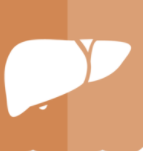 中国肝细胞癌将进入肿瘤免疫时代 将先后迎来创新二线疗法和一线疗法