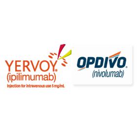 双肿瘤免疫疗法:Opdivo+Yervoy收获第4个适应症肝细胞癌二线疗法