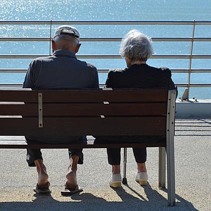 中药复方防治阿尔茨海默病的研究现状