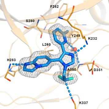肿瘤免疫治疗组合拳:BMS-986260与PD-1抑制剂联用癌症缓解率达90%以上