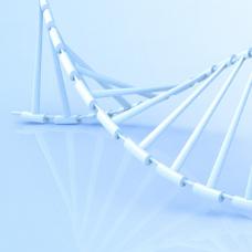 胃癌、胰 腺癌CAR-T临床试验获受理,细胞疗法攻克实体瘤未来可期
