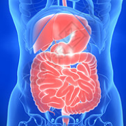 胃肠道间质瘤(GIST)小分子靶向药物研发格局一览