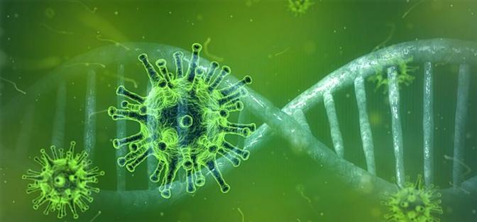 胆管癌再出靶向治疗新药