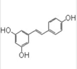 白藜芦醇产品图片